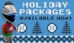holiday-package-website
