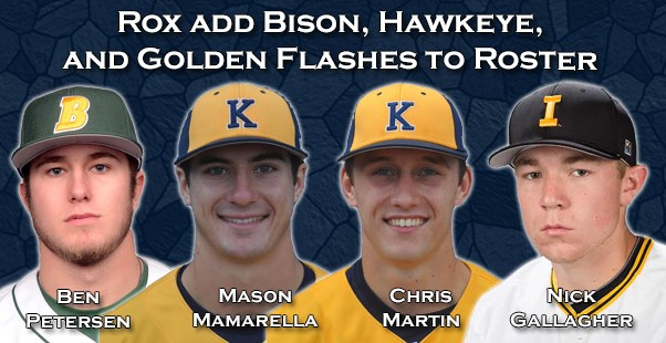 Rox add Bison, Hawkeye, and Golden Flashes to Roster