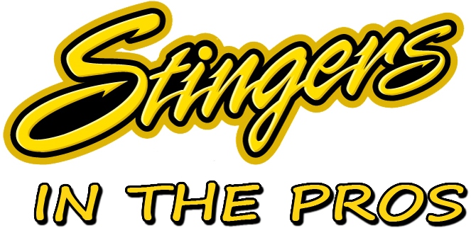 Stingers In The Pros Willmar Stingers Willmar Stingers