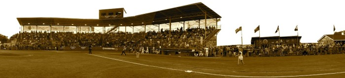 Witter Field Panoramic Small